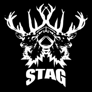 The artist Stag on Manchester Music