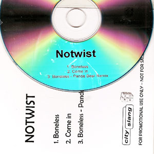 The artist Notwist on Manchester Music
